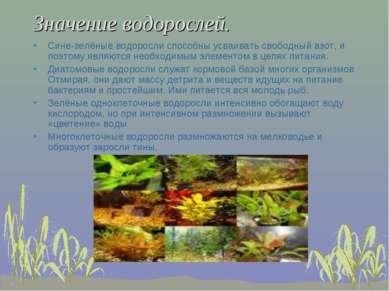 Значение водорослей. Сине-зелёные водоросли способны усваивать свободный азот...