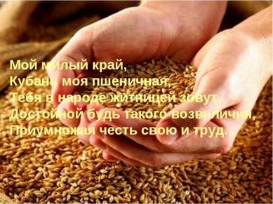 Мой милый край, Кубань моя пшеничная, Тебя в народе житницей зовут, Достойной...