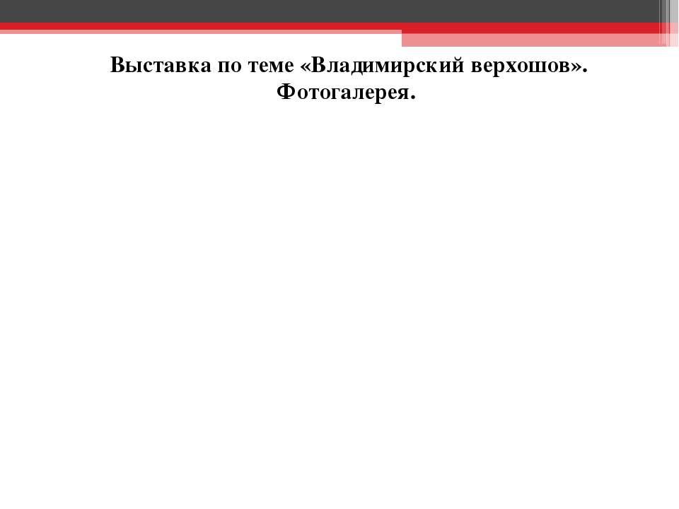 Выставка по теме «Владимирский верхошов». Фотогалерея.