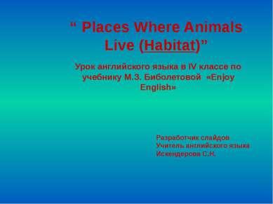 """ Places Where Animals Live (Habitat)"" Урок английского языка в IV классе по ..."