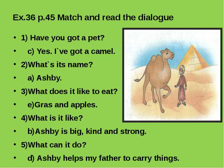 Ex.36 p.45 Match and read the dialogue 1) Have you got a pet? c) Yes. I`ve go...