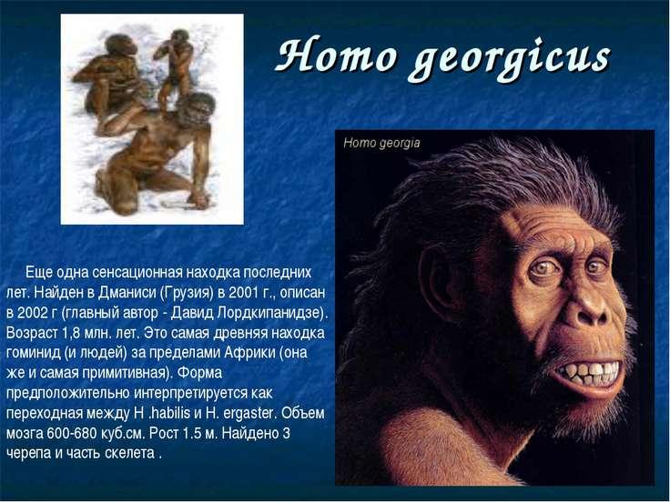Homo georgicus Еще одна сенсационная находка последних лет. Найден в Дманиси ...