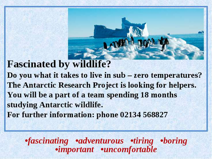 Fascinated by wildlife? Do you what it takes to live in sub – zero temperatur...