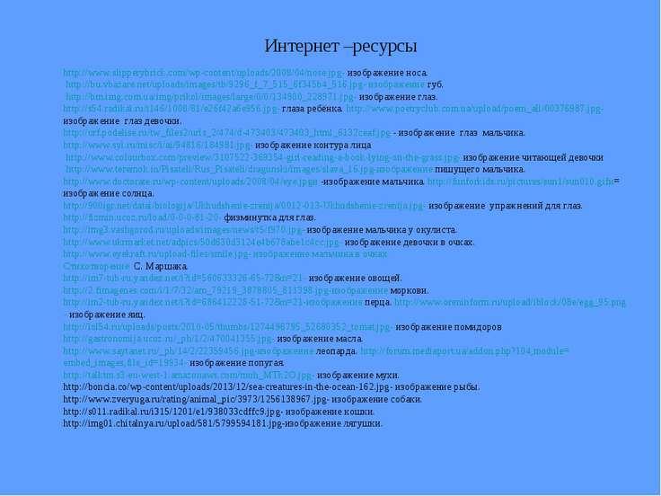 Интернет –ресурсы http://www.slipperybrick.com/wp-content/uploads/2008/04/nos...