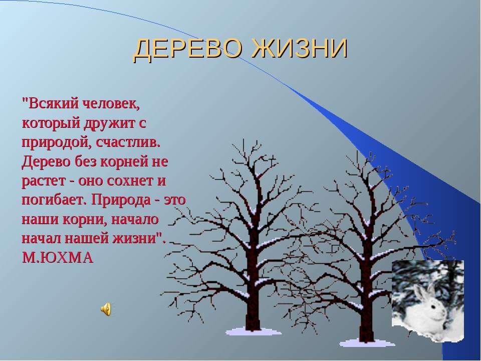 """ДЕРЕВО ЖИЗНИ """"Всякий человек, который дружит с природой, счастлив. Дерево без..."""