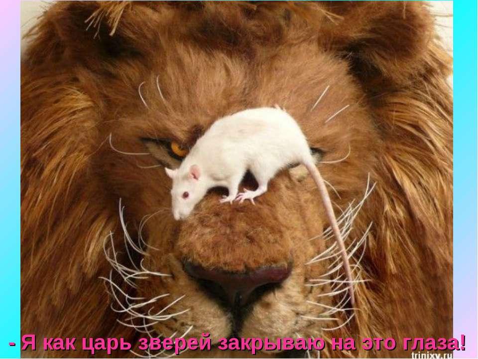 - Я как царь зверей закрываю на это глаза!
