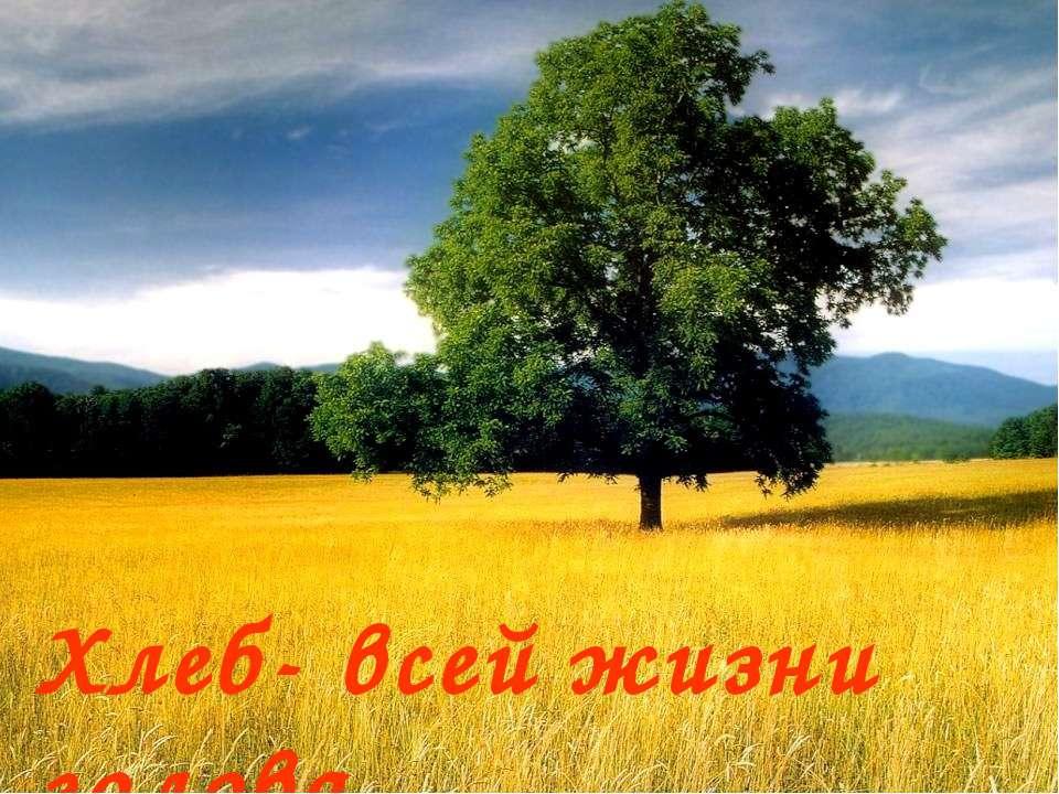 Хлеб- всей жизни голова Хлеб- всей жизни голова