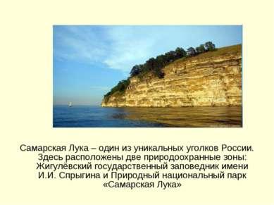 Самарская Лука – один из уникальных уголков России. Здесь расположены две при...