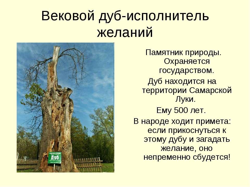 Вековой дуб-исполнитель желаний Памятник природы. Охраняется государством. Ду...