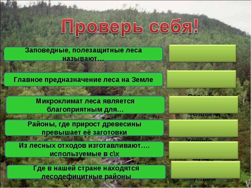 «Легкие планеты» природоохранные Отдыха и лечения человека Лесоизбыточные Зап...