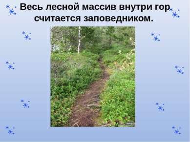 Весь лесной массив внутри гор считается заповедником.