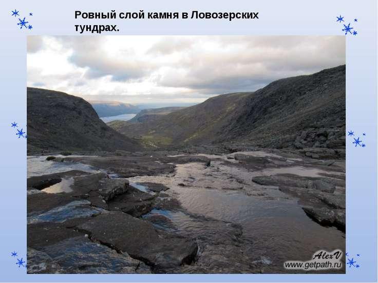 Ровный слой камня в Ловозерских тундрах.