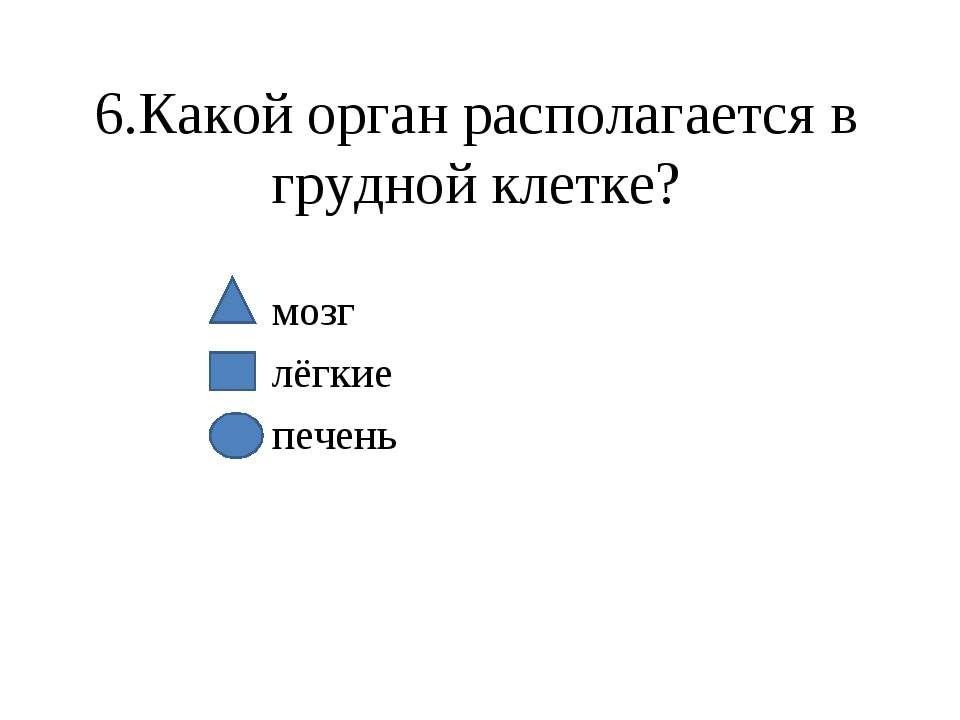 6.Какой орган располагается в грудной клетке? мозг лёгкие печень