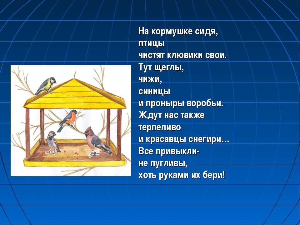 На кормушке сидя, птицы чистят клювики свои. Тут щеглы, чижи, синицы и проныр...