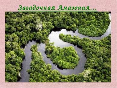 Загадочная Амазония…