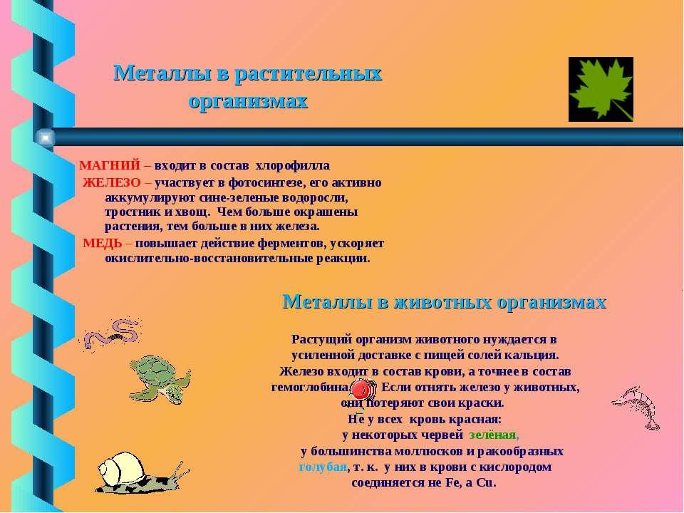 Металлы в растительных организмах МАГНИЙ – входит в состав хлорофилла ЖЕЛЕЗО ...