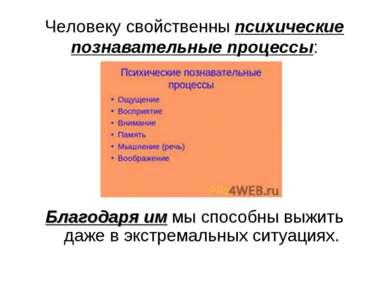 Человеку свойственны психические познавательные процессы: Благодаря им мы спо...