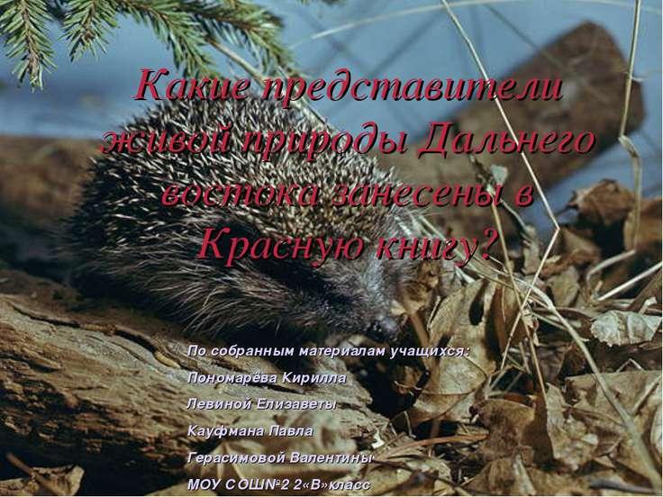 Какие представители живой природы Дальнего востока занесены в Красную книгу? ...