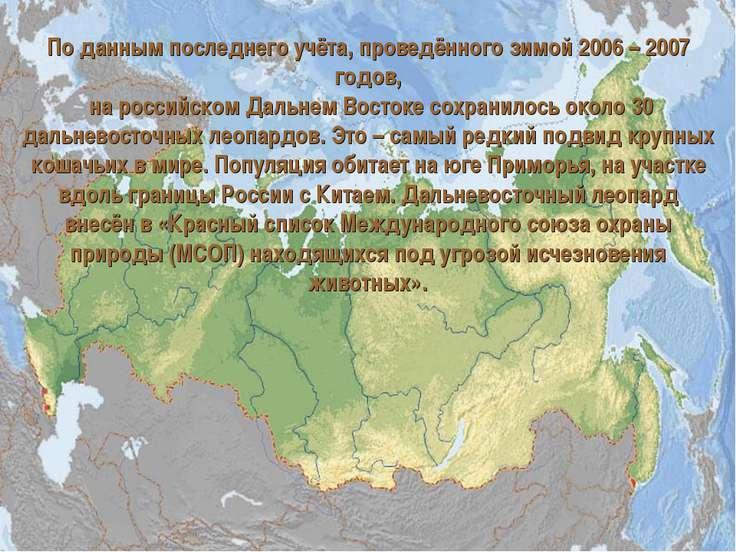 По данным последнего учёта, проведённого зимой 2006 – 2007 годов, на российск...