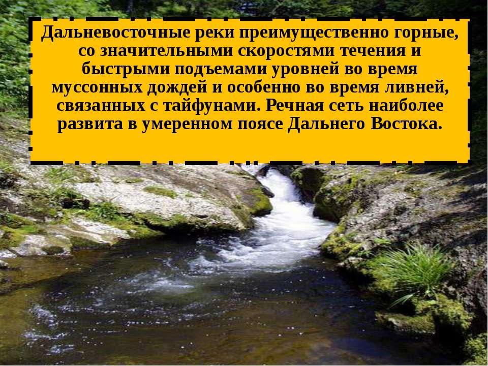 Дальневосточные реки преимущественно горные, со значительными скоростями тече...