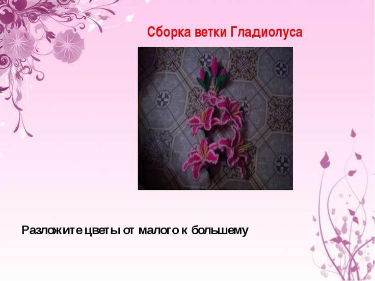 Сборка ветки Гладиолуса Разложите цветы от малого к большему