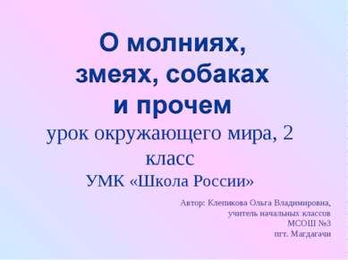 урок окружающего мира, 2 класс УМК «Школа России» Автор: Клепикова Ольга Влад...