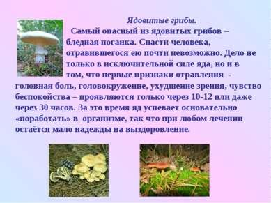 Ядовитые грибы. Самый опасный из ядовитых грибов – бледная поганка. Спасти че...