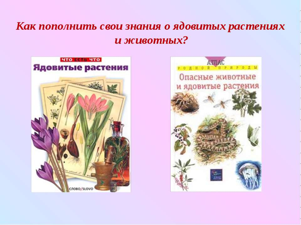 Как пополнить свои знания о ядовитых растениях и животных?