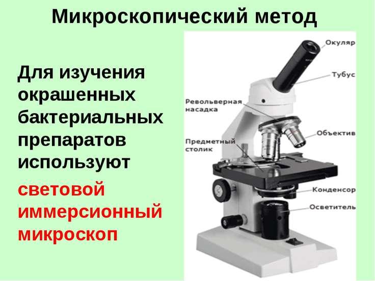 Микроскопический метод Для изучения окрашенных бактериальных препаратов испол...