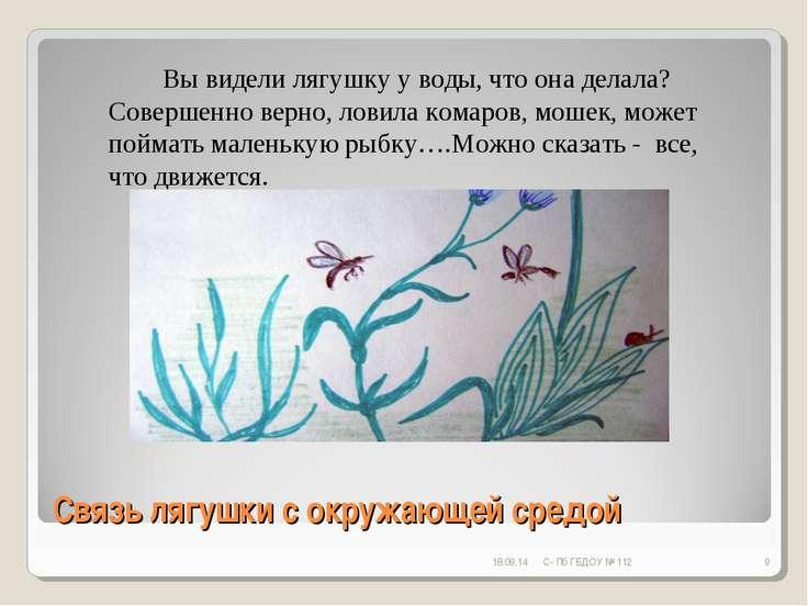 Связь лягушки с окружающей средой * С- Пб ГБДОУ № 112 * Вы видели лягушку у в...