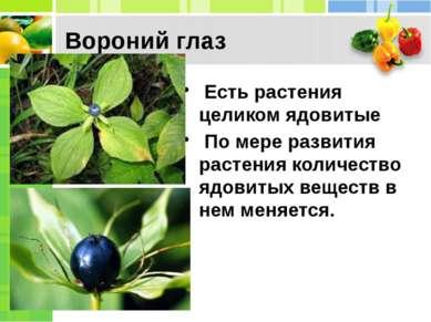 Вороний глаз Есть растения целиком ядовитые По мере развития растения количе...