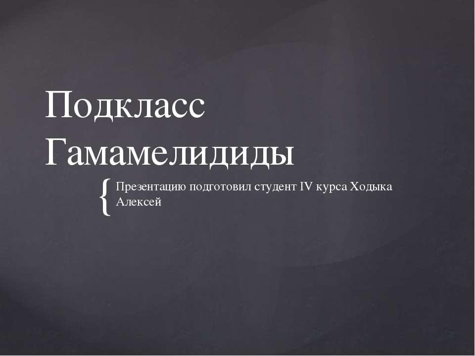 Подкласс Гамамелидиды Презентацию подготовил студент IV курса Ходыка Алексей {