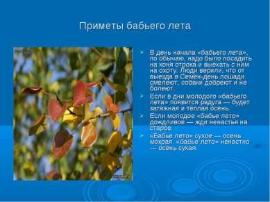 Приметы бабьего лета В день начала «бабьего лета», по обычаю, надо было посад...
