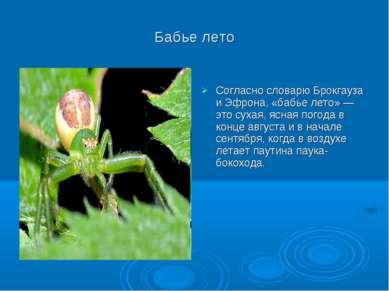 Бабье лето Согласно словарю Брокгауза и Эфрона, «бабье лето» — это сухая, ясн...