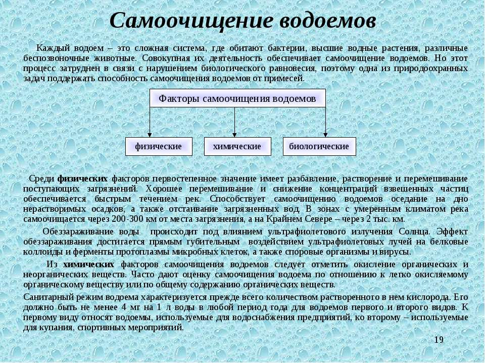 * Самоочищение водоемов Каждый водоем – это сложная система, где обитают бакт...