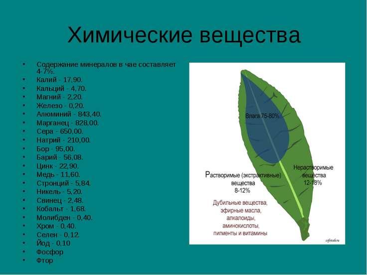 Химические вещества Содержание минералов в чае составляет 4-7%. Калий - 17,90...