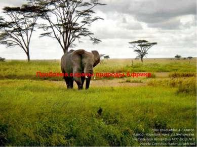 Проблема охраны природы Африки Урок географии в 7 классе. Автор: Карезина Нин...