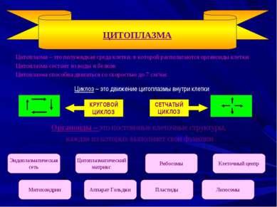 Цитоплазма – это полужидкая среда клетки, в которой располагаются органоиды к...
