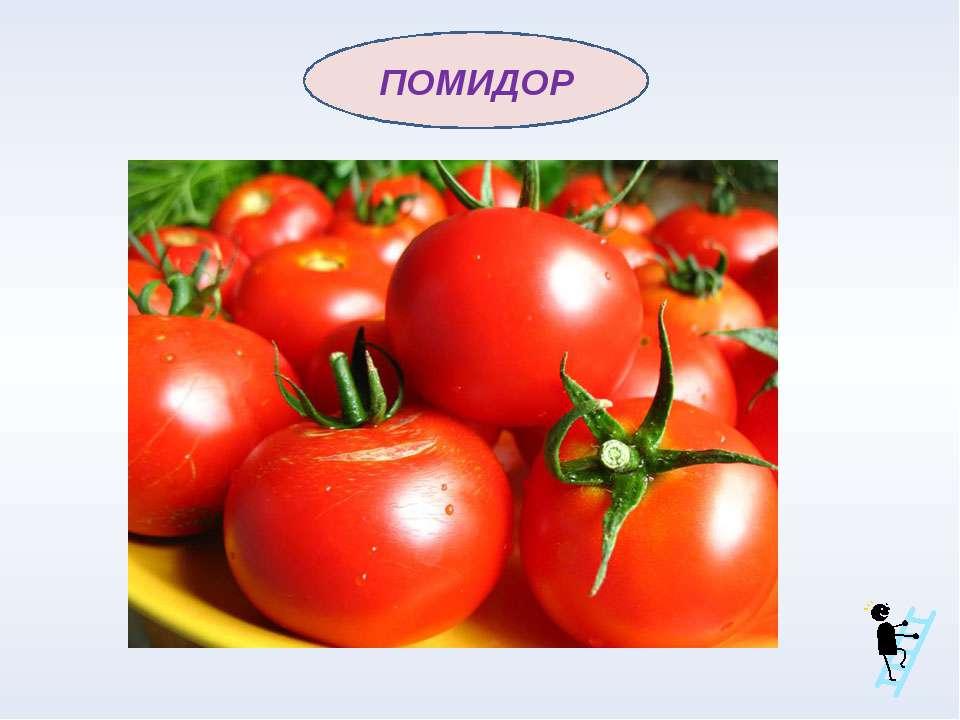 Природа создала этот ароматный и сочный плод, родившийся в Среднеазиатских ст...