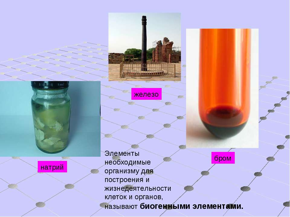 бром железо натрий Элементы необходимые организму для построения и жизнедеяте...