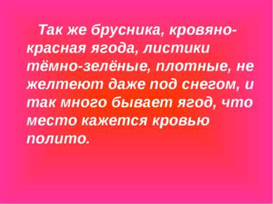 Так же брусника, кровяно-красная ягода, листики тёмно-зелёные, плотные, не же...