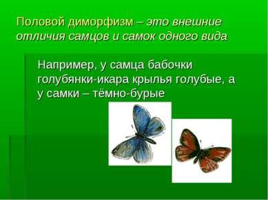 Половой диморфизм – это внешние отличия самцов и самок одного вида Например, ...