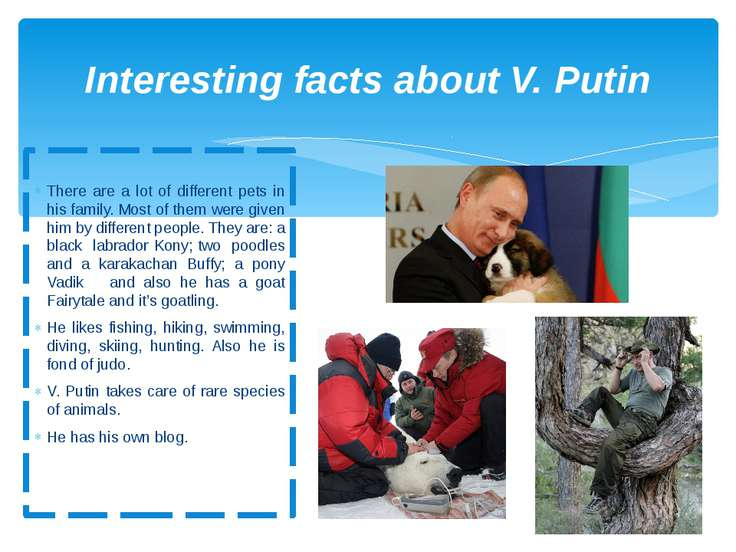 Interesting facts about V. Putin There are a lot of different pets in his fam...