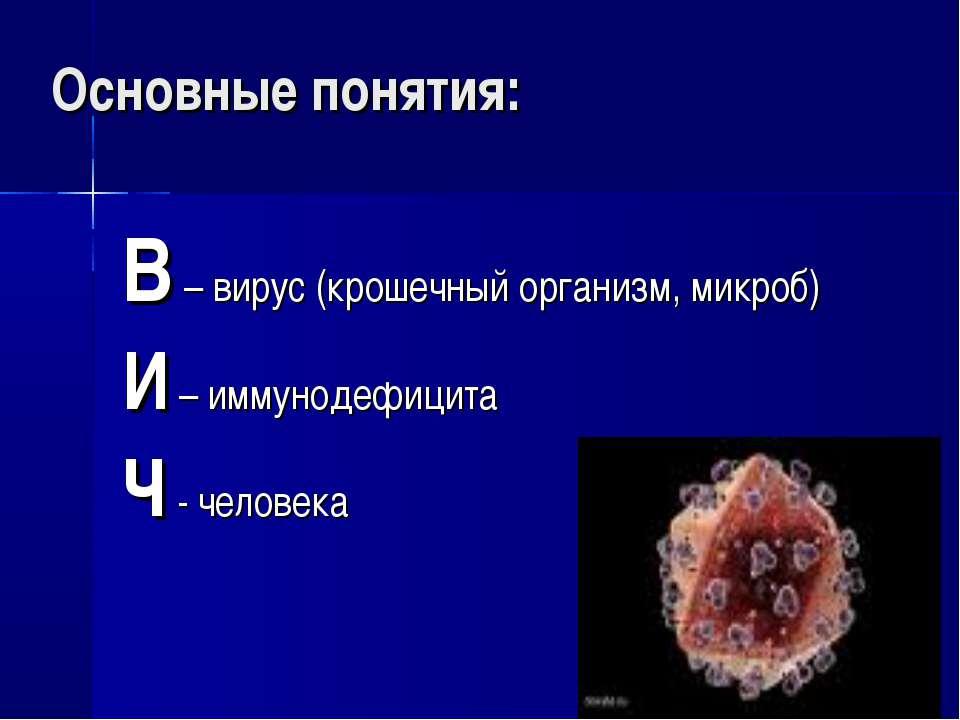 Основные понятия: В – вирус (крошечный организм, микроб) И – иммунодефицита Ч...
