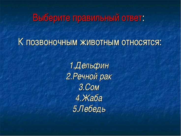 Выберите правильный ответ: К позвоночным животным относятся: 1.Дельфин 2.Речн...