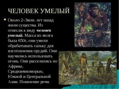 ЧЕЛОВЕК УМЕЛЫЙ Около 2–3млн. лет назад жили существа. Их отнесли к виду челов...