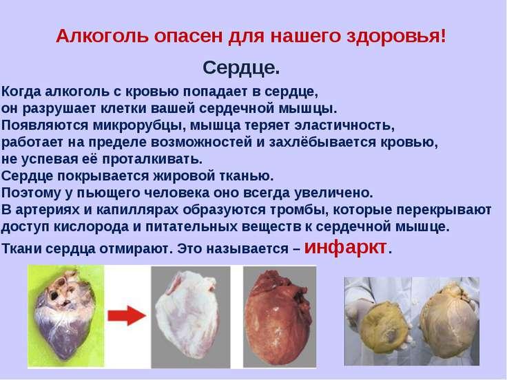 Алкоголь опасен для нашего здоровья! Сердце. Когда алкоголь с кровью попадает...
