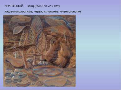 КРИПТОЗОЙ, Венд (650-570 млн лет) Кишечнополостные, черви, иглокожие, членист...