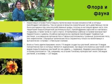 Флора и фауна Коралловые острова Тонга покрыты тропическими лесами низменност...