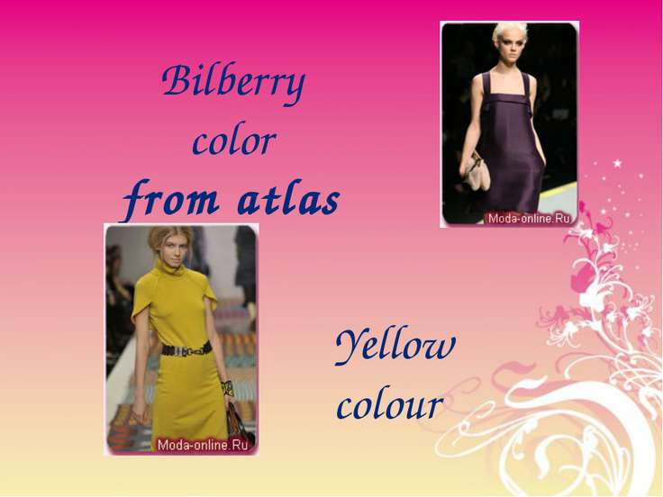 Bilberry color from atlas Yellow colour
